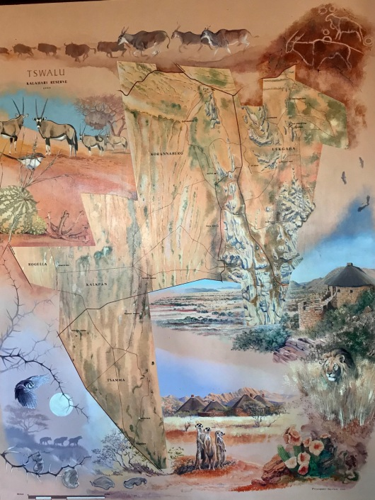 Map of Tswalu Game Reserve. Near the middle of the map, a marking called Motse is where the lodge is located. THe airstrip is to the right of that. We saw the rhino in the lower right area