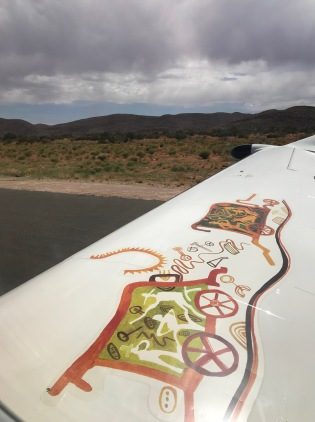 A Fireblade Aviation wing mural as we lift off Tswalu.