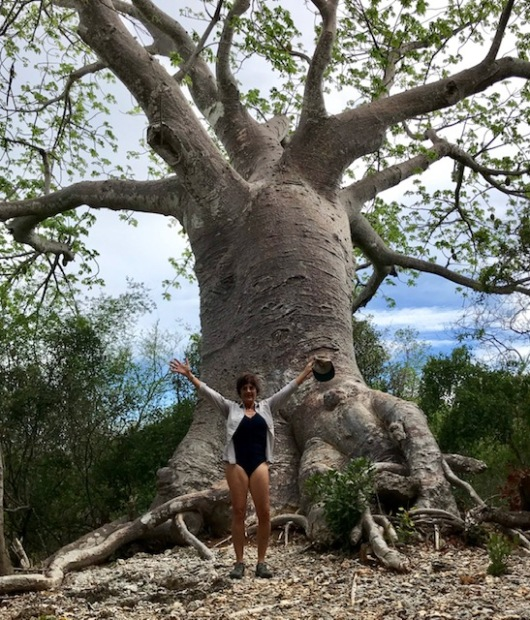 One of the 58 baobab trees on the very small island.