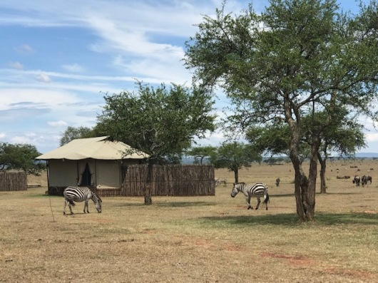 Our tent at Saboro Camp